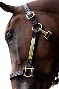 Red Horse Halter Black Horse halter Rainbow Horse Halter Gold Chevron Horse Tack Colorful Chevron Draft Halter Chevron Horse Halter