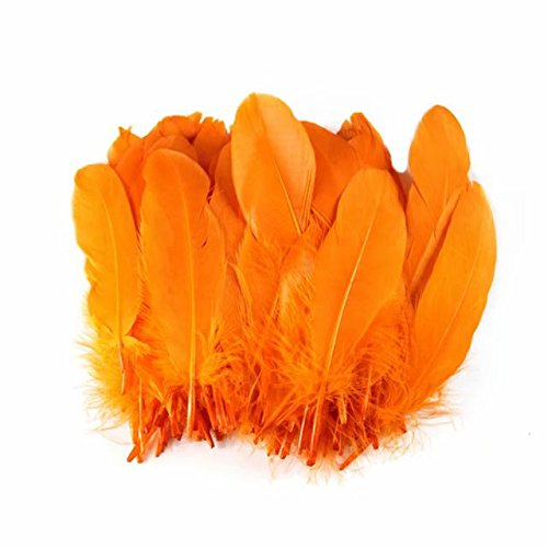 Celine lin 100PCS Dyed Home Decor Goose Feather For DIY Art,Home Party or Wedding 6-8inch,Orange]()