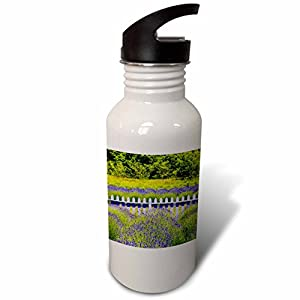 3dRose Danita Delimont - Flowers - USA, Washington State, Squim, Lavender Field - Flip Straw 21oz Water Bottle (wb_279713_2)