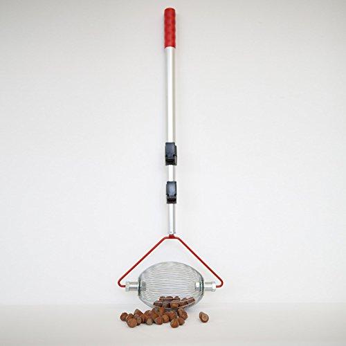Haselnuss-Sammler - mit Teleskopstab - der Roll-Blitz - die kleinste Obstaufsammelmaschine der Welt direkt vom Hersteller für Haselnüsse, Oliven uvm (silber small)