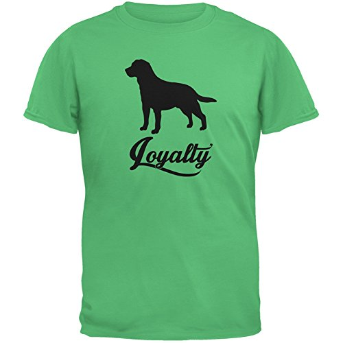 Labrador Loyalty Irish Green Youth T-Shirt - X-Large(18) (Irish Lions Home Shirt)