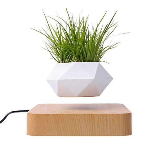 Levitating Air Bonsai Pot, Rotation Flower Pot Planters Mini Sky-Garden Magnetic Levitation Suspension Floating Pot…