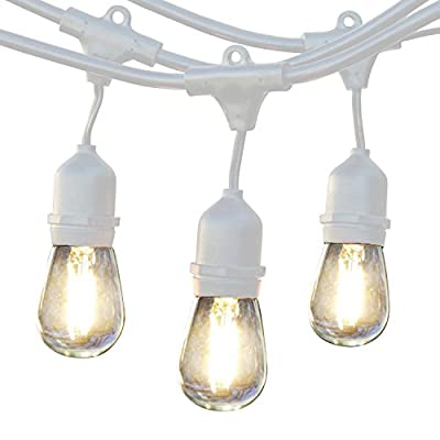 Brightech Ambience Pro LED Commercial Grade Outdoor String Lights with Hanging Sockets - Dimmable 2 Watt Bulbs - 48 Ft Market Cafe Edison Vintage Bistro Weatherproof Strand for Porch Patio Garden -Wht