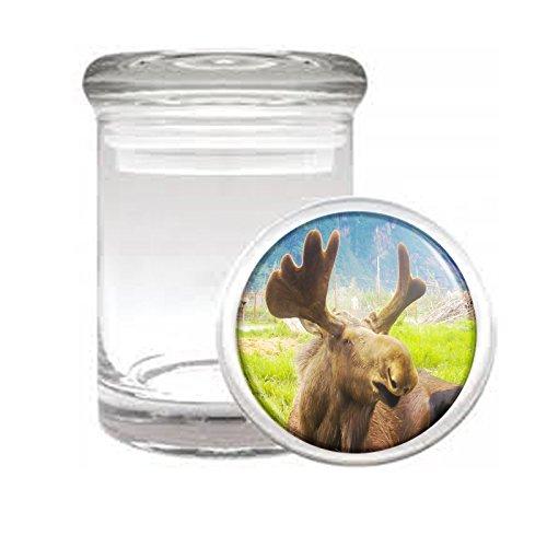 "Medical Glass Stash Jar Alaska Scenic Sights S6 Air Tight Lid 3"" x 2"" Small Storage Herbs & Spices"