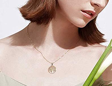 16+2 Extender Necklace B07G5F9YYD/_US AGVANA 925 Sterling Silver//Gold Filled Tree of Life Minimalist Pendant Necklace Gifts for Women