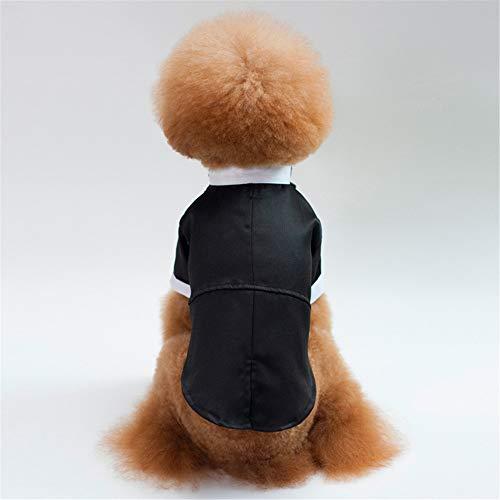 Jdogayncat Pet Clothing, Suit Wedding Dress, Small and Medium Dog Teddy Bear Dog -