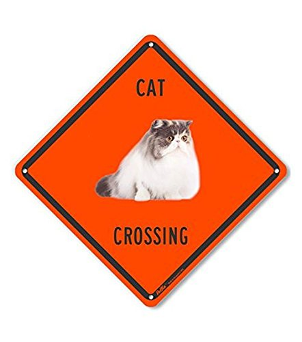 PetKa Signs and Graphics PKAC-0652-NP/_10x10Cat Crossing Plastic Sign 10 x 10