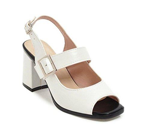 Cinturón Verano de Boca Blanco para Antideslizante Confort Mujer 34 de 42 Romano de 7cm Sandalias Zapatos Hebilla Calzado pez WEIQI qOz4Xpp