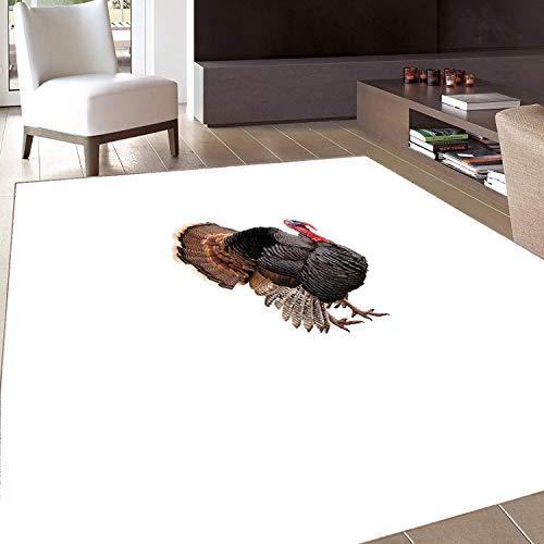 Rug,FloorMatRug,Turkey,AreaRug,Realistic Bird Picture Thanksgiving Day Family Dinner Theme Farm Animal Photo,Home mat,6'x7'Black Brown Coral,RubberNonSlip,Indoor/FrontDoor/KitchenandLivingRoo -