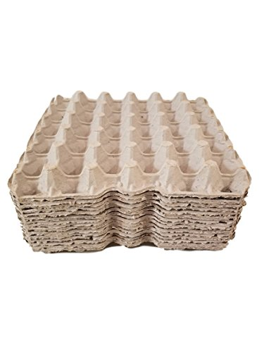 Biodegradable Pulp Fiber Egg Flats by MT Products - (15