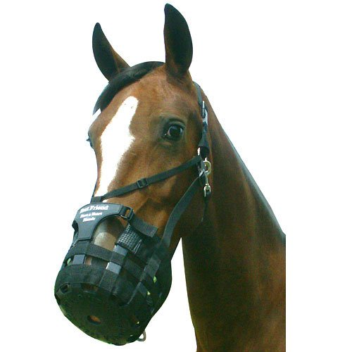 Best Friend Have a Heart Muzzle Draft - Large (Best Friend Grazing Muzzle)