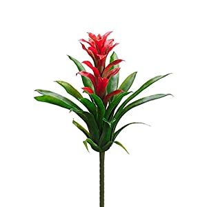 "Floral Home Artificial Tropical Bromeliad Plant in Red and Green - 14"" Tall 18"
