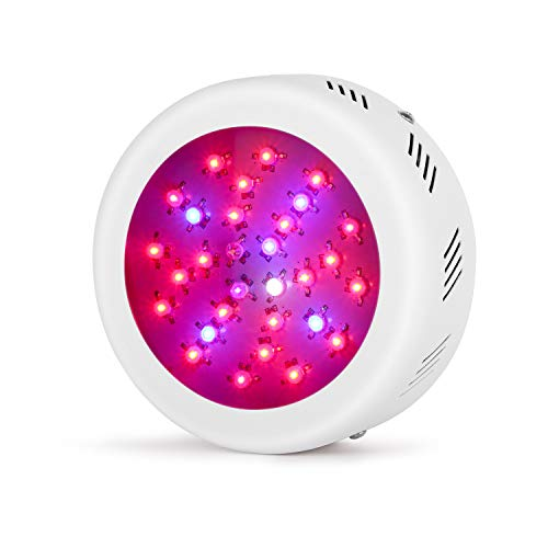 Best Led Grow Light Ufo in US - 5