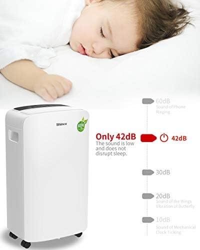 SHINCO déshumidificateur d'air, 10 L/24h, Portable,Silencieux, avec Contrôle De L'humiditÉ Et Minuterie, Drainage Continu, ÉLimine L'HumiditÉ pour Les Maisons, Chambres, Garages, sous-Sols