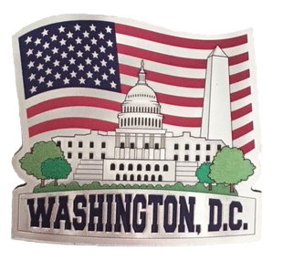 Patriotic White House Souvenir Magnet Featuring Washington D.C. and The American Flag