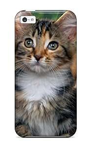 Best 2708166K68124609 Waterdrop Snap-on 3 Cute Kittens Cute Animals Case For Iphone 6 plus