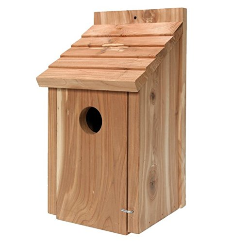 Amazon.com : Gardirect Wild Bird Classic Nesting Box, Bird House for Blue Tit, Sparrow (Cedar) : Garden & Outdoor