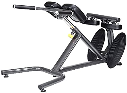 Amazon com : SportsArt Fitness A993 Status Series 45 Degree