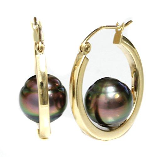 14k Yellow Gold Tahitian South Sea Pearl Dangle Hoop earrings - AAA and AAA Flawless (AAA Flawless Peacock)