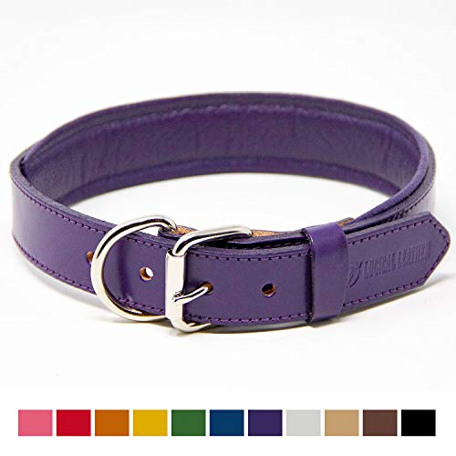 Logical Leather Padded Dog Collar - Best Full Grain Heavy Duty Genuine Leather Collar - Purple - Large