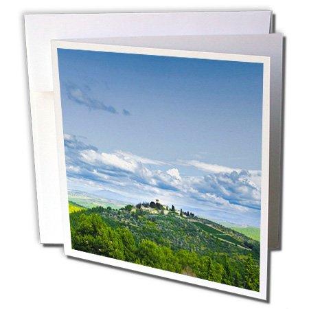 3dRose Italy, Tuscany, Estate Castello di Verrazzano - EU16 RDU0068 - Richard Duval - Greeting Cards, 6 x 6 inches, set of 6 (gc_82167_1)