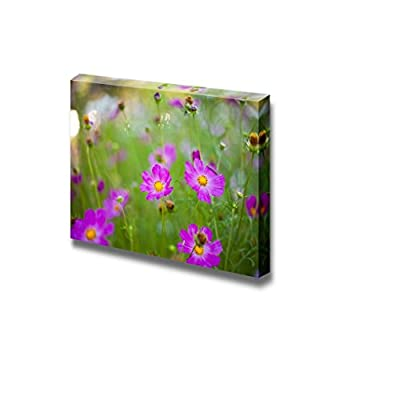 Canvas Prints Wall Art - Different Pink Cosmos Flowers Closeup | Modern Wall Decor/Home Art Stretched Gallery Canvas Wraps Giclee Print & Ready to Hang - 24