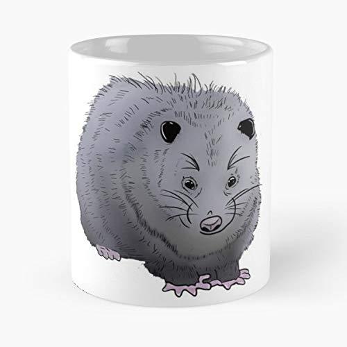 (Opossum Possum Pal Friend Gift Coffee/tea Ceramic Mug 11 Oz)