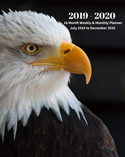 2020 American Eagle - 2019 - 2020   18 Month Weekly & Monthly Planner July 2019 to December 2020: American Bald Eagle Bird Nature Monthly Calendar with U.S./UK/ ... Calendar in Review/Notes 8 x 10 in. Vol 16