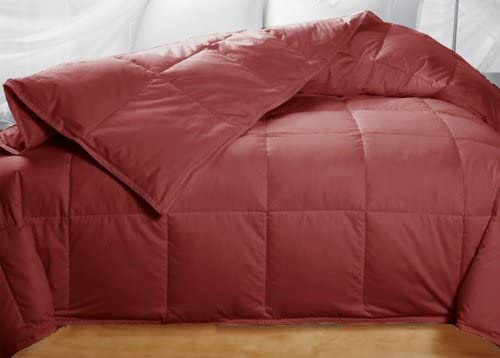Amazon Com Cranberry Brick Red Colored Feather Down Comforter