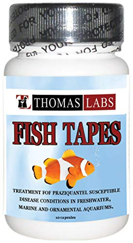 Thomas Labs Fish Tapes Praziquantel, 12 Capsules, 34 milligrams