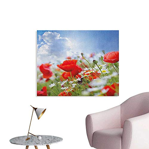 Anzhutwelve Country Photographic Wallpaper Idyllic Spring Meadow with Poppy and Daisy Flowers Sunny Sky Clouds Garden Design Funny Poster Multicolor W28 xL20