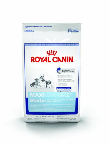 Royal Canin Maxi Starter Mother And Babydog, Dry Dog Food Formula, 26-Pound Bag