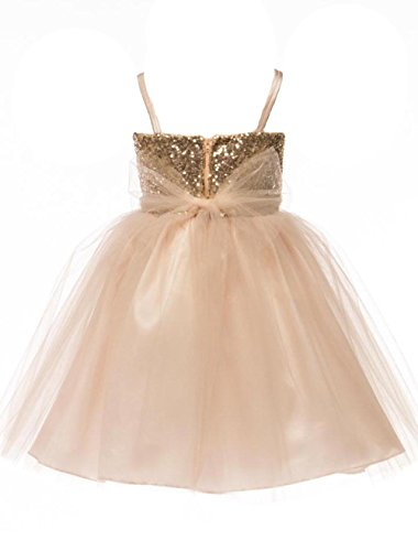 83493ddc4f8 JM DREAMLINE Sequin Top Overlay Tulle Skirt Flower Girls Dresses  (Champagne
