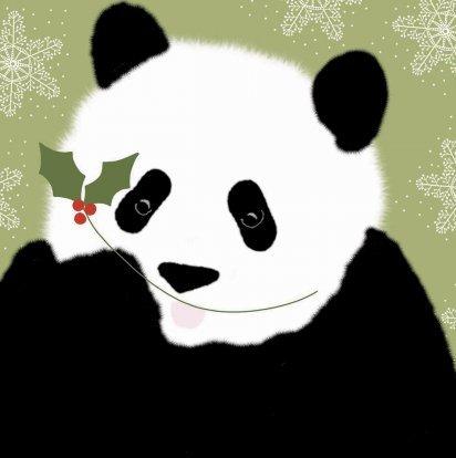 wwf animal charity giant panda bear christmas cards pack of 10