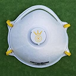 AllergyZone AZN95V-10 NIOSH N95 Cone-Shaped Respirator Mask