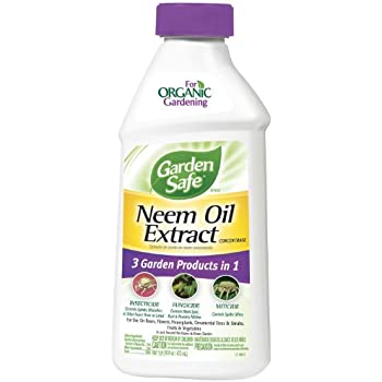 Garden Safe Neem Oil Extract Concentrate (HG-83179) (16 fl oz)