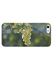 iPhone 5&5S Case - Photography - Grape26 3D Full Wrap