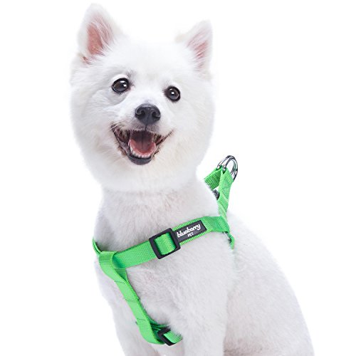 Blueberry Pet 19 Colors Step-in Classic Dog Harness, Chest Girth 26 - 39, Neon Green, Large, Adjustable Harnesses for Dogs