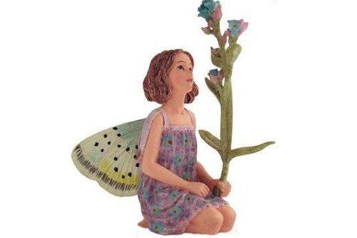 Fairy Garden Forget Me Not Flower Fairy Flower Fairy