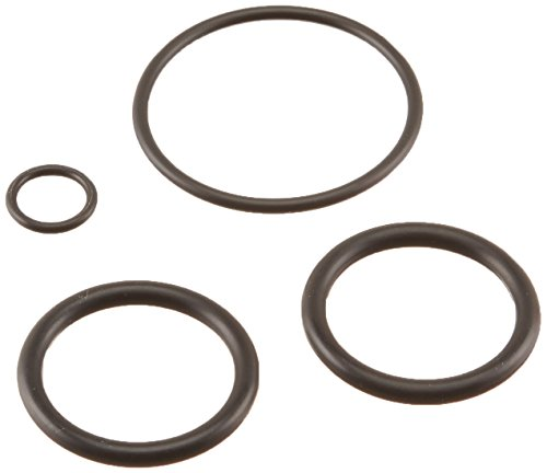 Pentair 273109 Noncorosive Slide O-Ring Replacement Kit