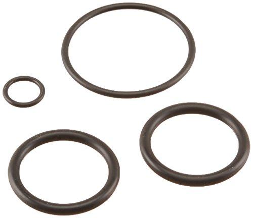 (Pentair 273109 Noncorosive Slide O-Ring Replacement Kit)