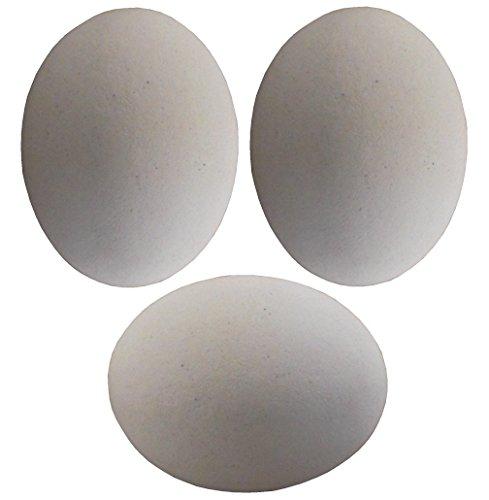 3 PACK WHITE CERAMIC DUMMY BIRD QUAIL NEST EGG HATCHING