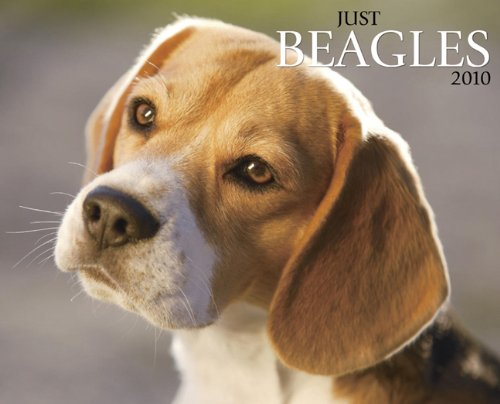 Just Beagles 2010 Calendar - 2010 Beagle Calendar