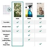 Alen BreatheSmart 75i Antimicrobial True HEPA Filter - for Allergies & Dust, Allergies/Dust, Espresso