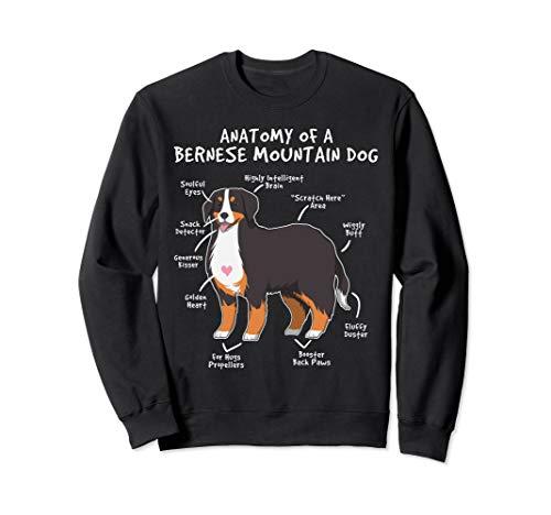 - Anatomy Of A Bernese Mountain Dog Puppy Gift Sweatshirt