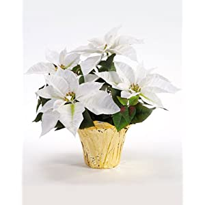 PETALS – Table Top Silk Poinsettia Plant – Handcrafted – Amazingly Lifelike – 18 x 16 Inches (White)