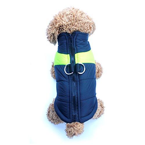 Idepet Abrigo aprueba de agua de perro para invierno Ropa para perros peque/ños medianos y grandes Mascotas Tallas S M L XL XXL 3XL 4XL 5XL TM