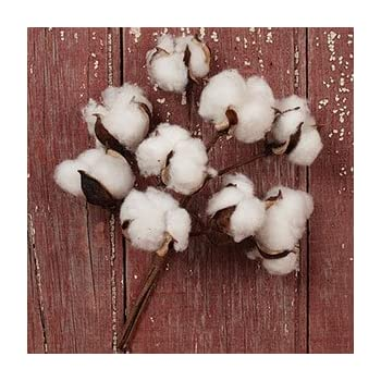 """The Country House Collection Cotton Boll Floral Spray Bunch (10"""")"""