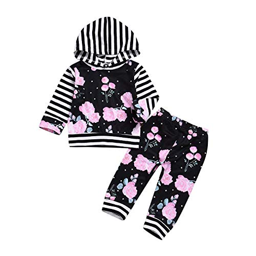 Toddler Baby Girls Clothes Long Sleeve Hoodies Newborn Pink Flowers Sweatshirt Floral Pants Outfit Sets (Newborn Pink Flowers Sweatshirt, 12-18 Months)