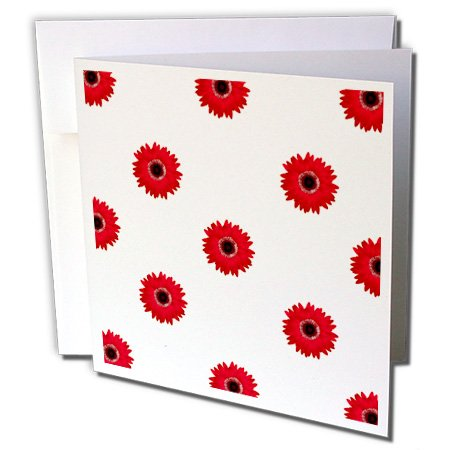 3dRose Pretty Red Gerbera Daisies Greeting Cards, 6